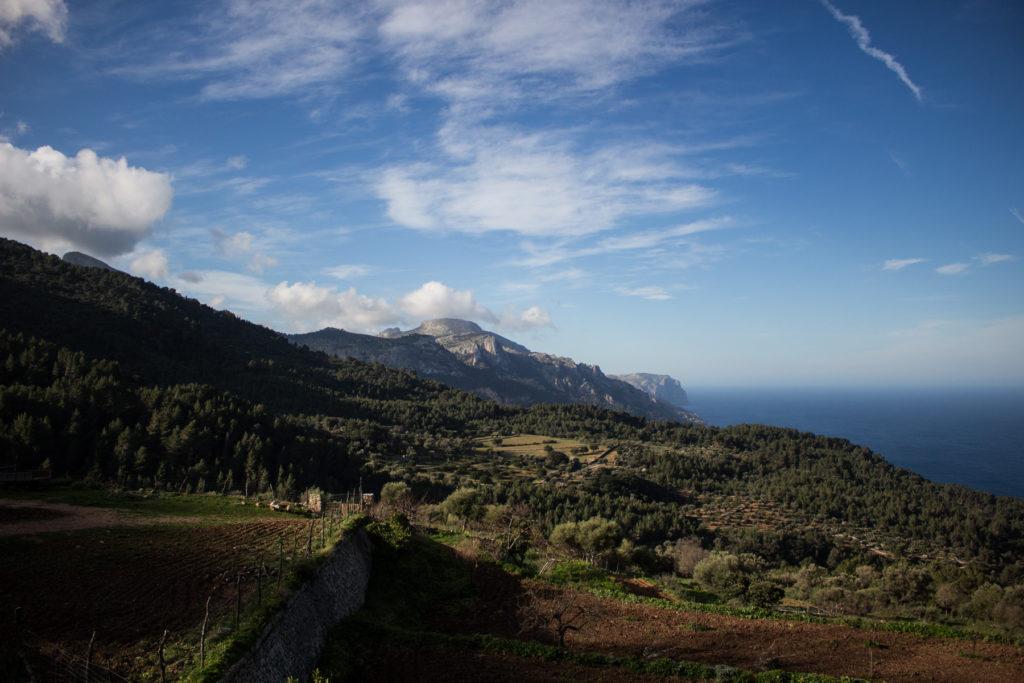 Aussicht von der Finca Planicia. Mittig im Bild der Mola de s'Esclop