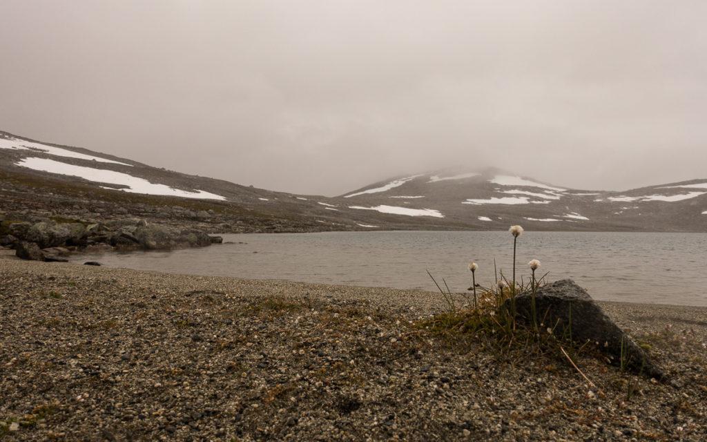 Kjorisvatnet Nordkalottleden