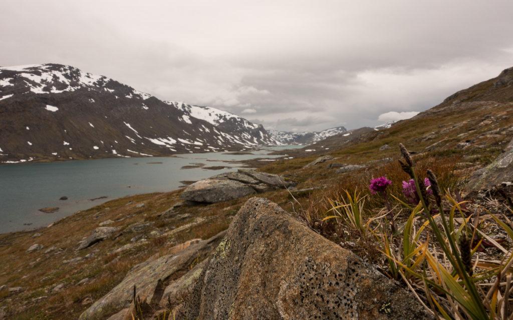 Roanasdalen Baugevatnet Nordkalottleden