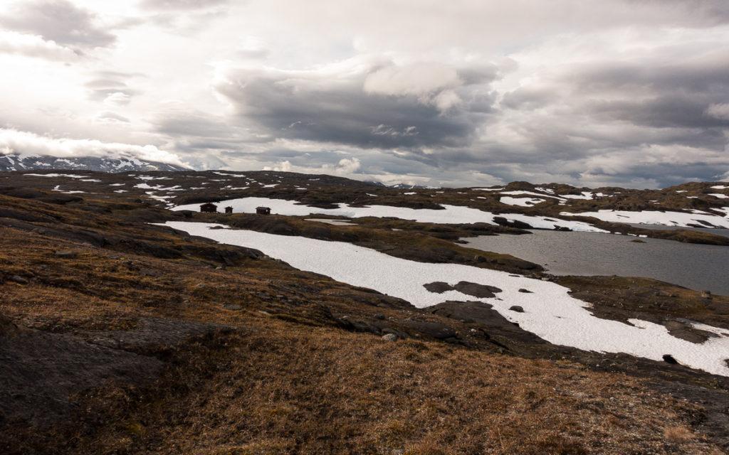 Røysvatnhytta Nordkalottleden